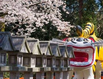 Japanese Rituals and an Overnight Stay at a Prestigious Temple