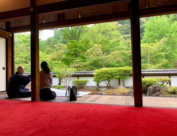 Enjoy Nara Sake to the Fullest on a Special Tour into Places Not Open to the General Public!