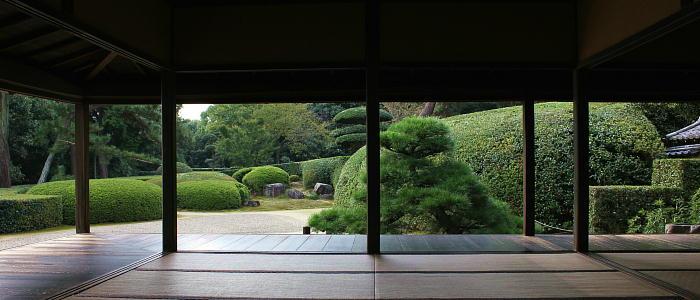 A Deeper Look into Nara!