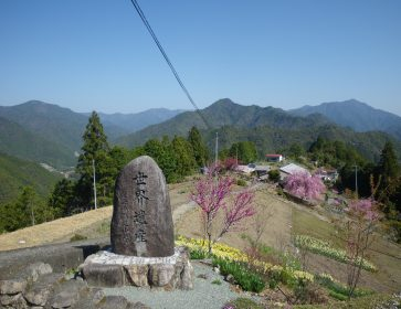 Scenic Trekking on the Historical Kumanokodo Kohechi Route!