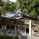 The Shrine Where the Gods Dwell – Tamaki-jinja Shrine –