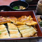 Eel in Summer –Nikaku Unagi Restaurant-